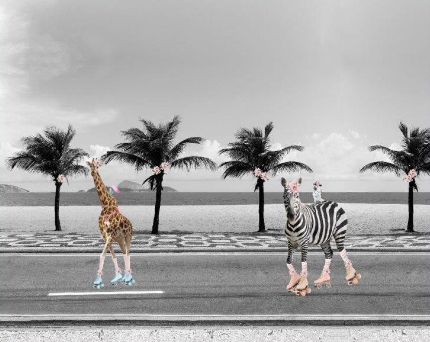 Rollerskate Animal Tricot Paneel - Stenzo